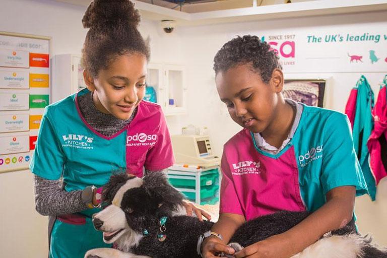 kids learning to be vets at kidzania