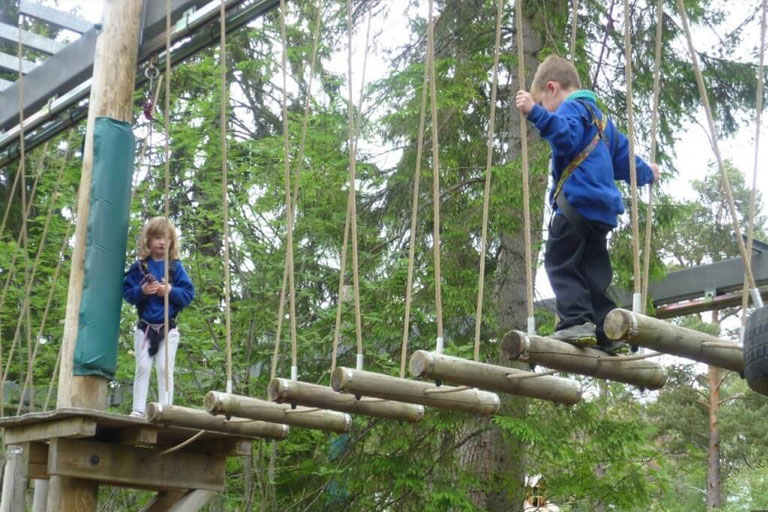 rope bridge landmark forest