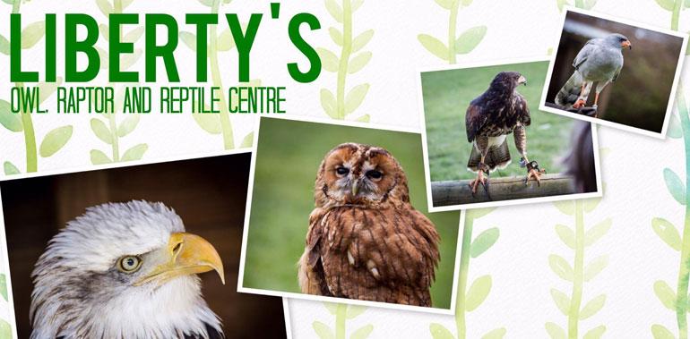 Libertys Owl and Raptor Centre