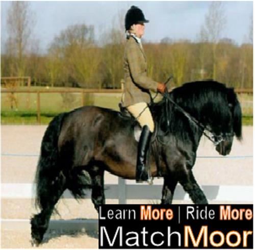 Matchmoor