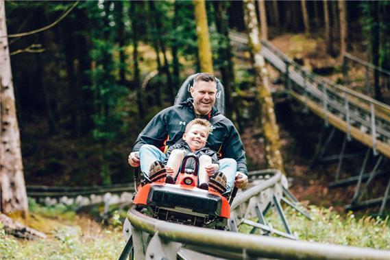 Zip World Forest Coaster