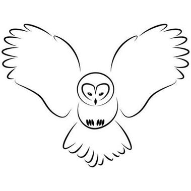 Willows Bird Of Prey Centre