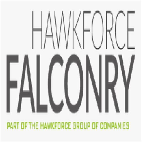 HawkForce