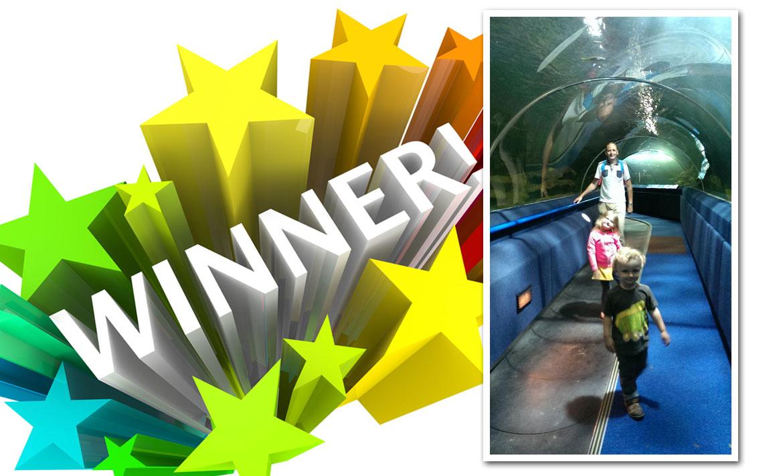 Competition Winner header image