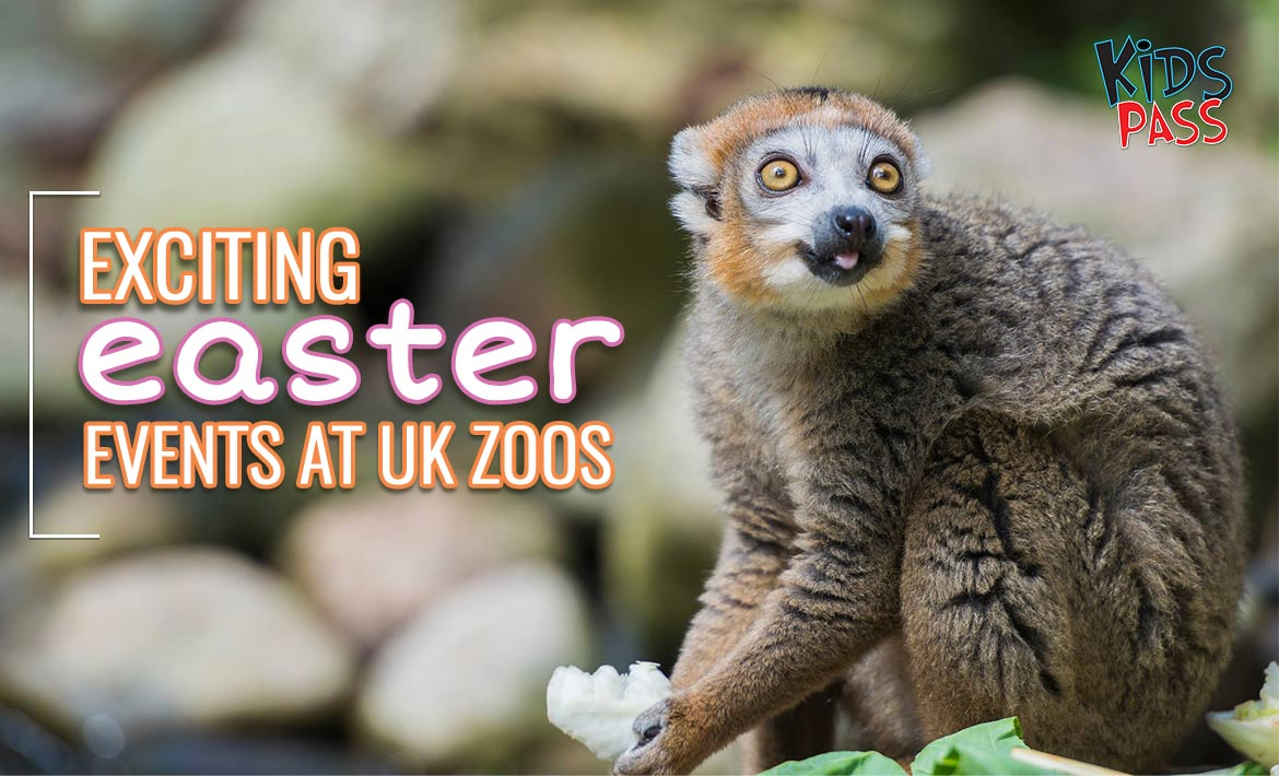 Exciting Easter Events at UK Zoos Near You header image