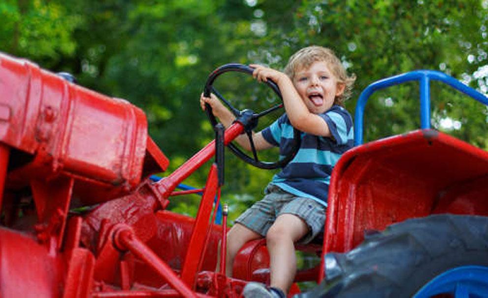 battersea park zoo kid having fun on tractor
