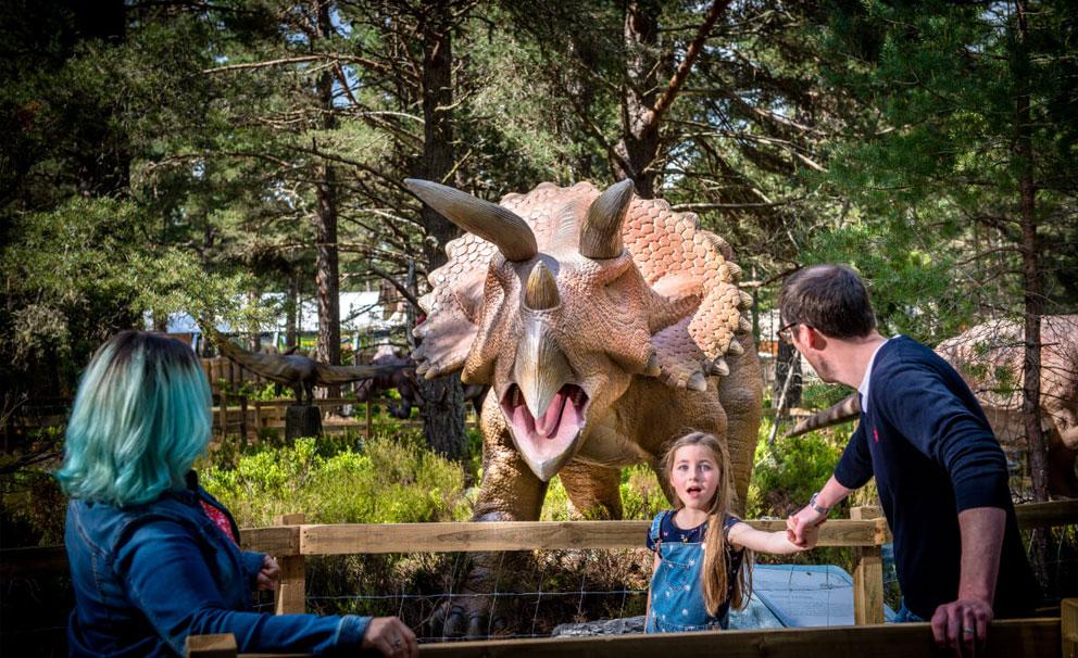 landmark forest triceratops