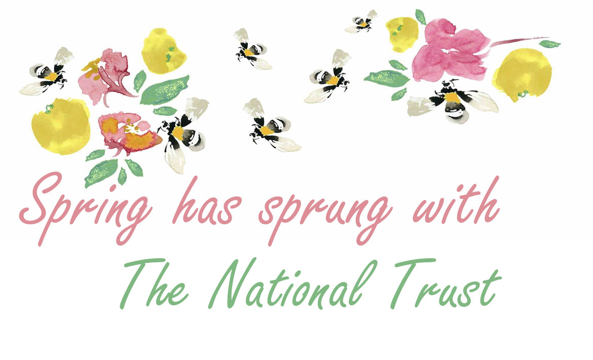 Spend Spring in the Sun header image