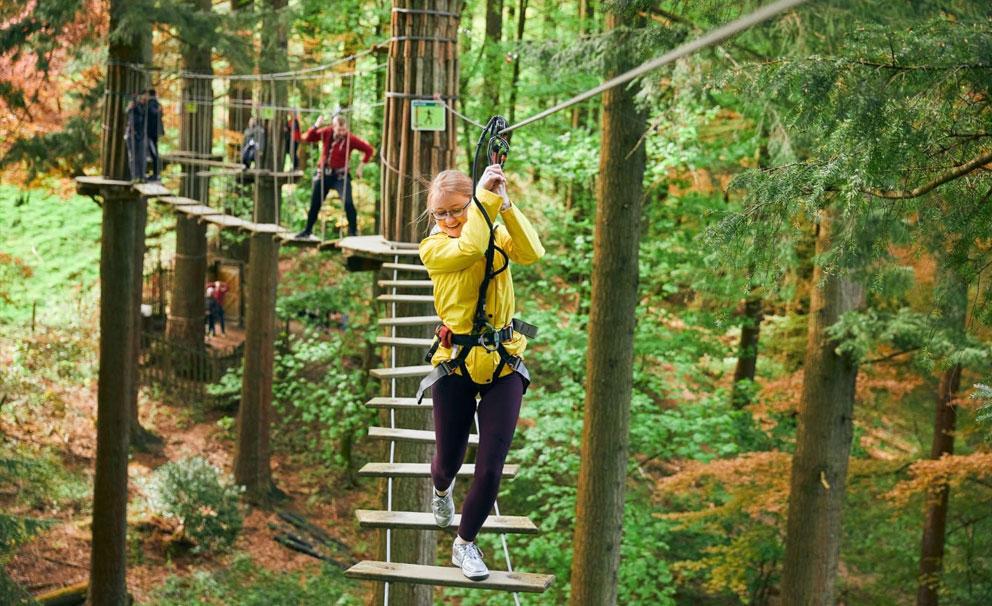go ape high rope walk